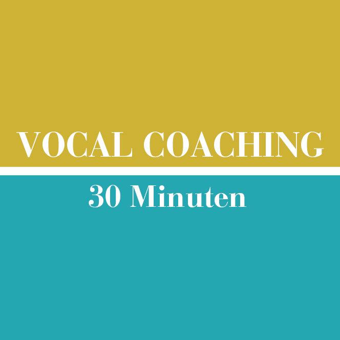 Vocal Coaching // 30 Minuten