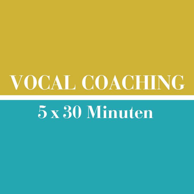 Vocal Coaching // 5 x 30 Minuten