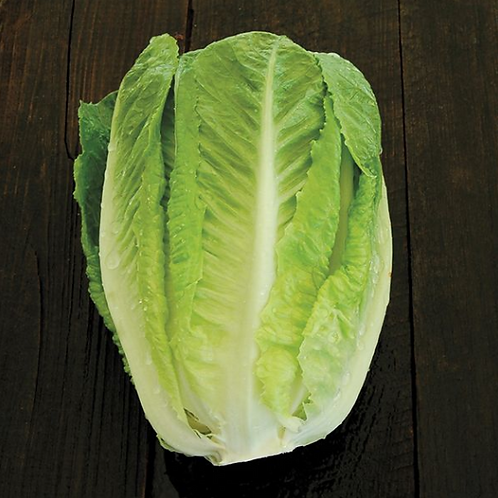 Green Towers Romaine Lettuce - 4 pack