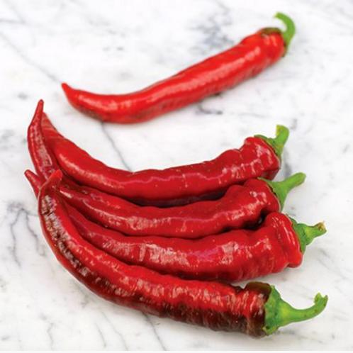 "Jimmy Nardello Swt. Pepper - 4"" pot"
