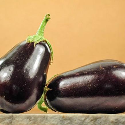 """Black Beauty Eggplant - 4"""" pot"""