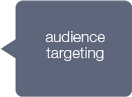 audience targeting.png