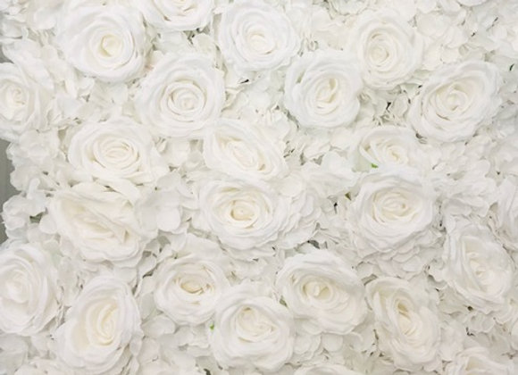 White Rose Hedge Wall