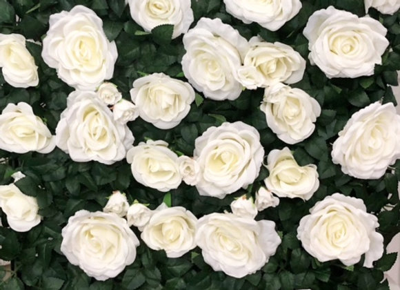 White Leafy Rose Hedge Wall