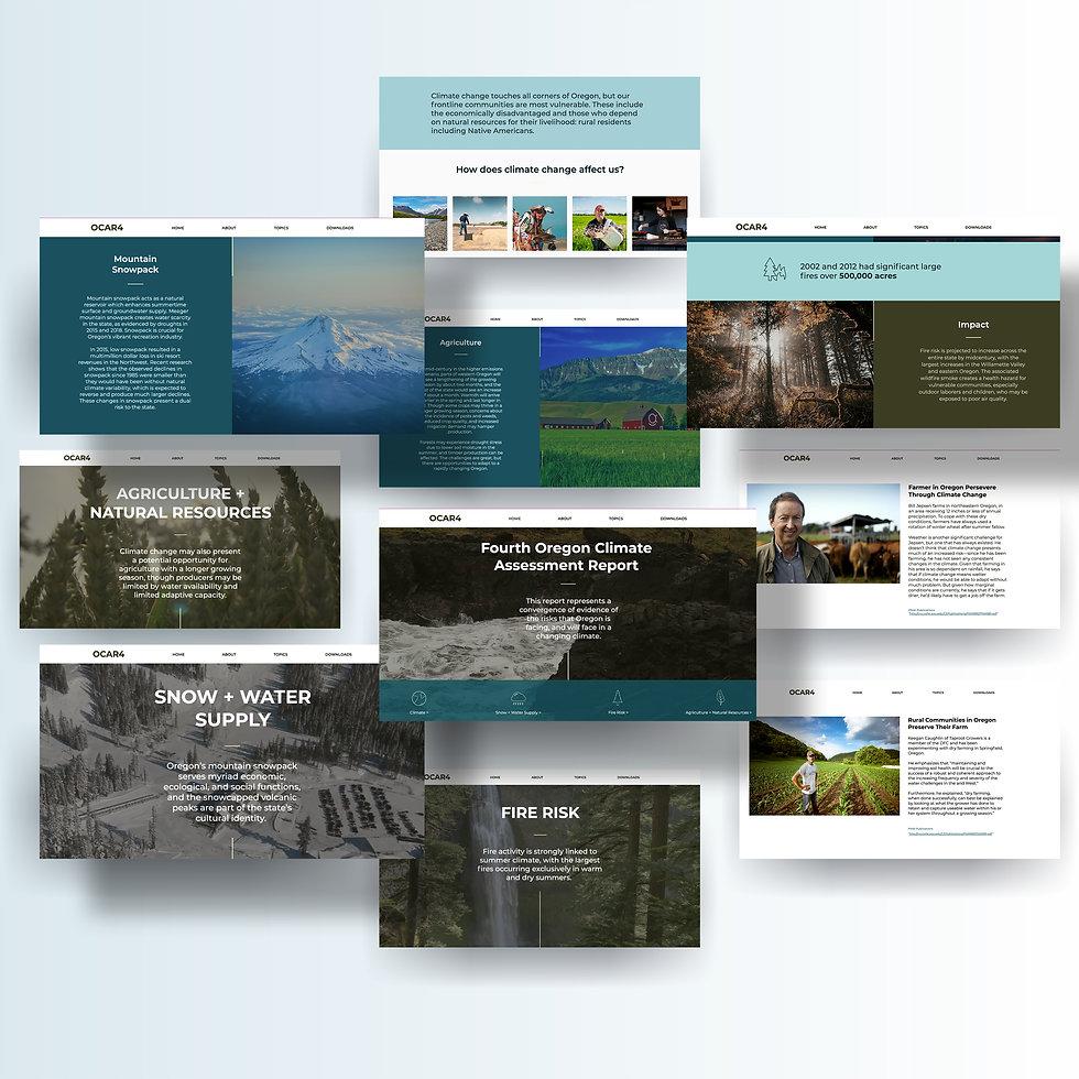 occri_website.jpg