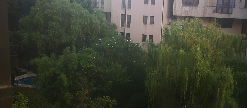 SHANGHAI, TOINEN LUKU