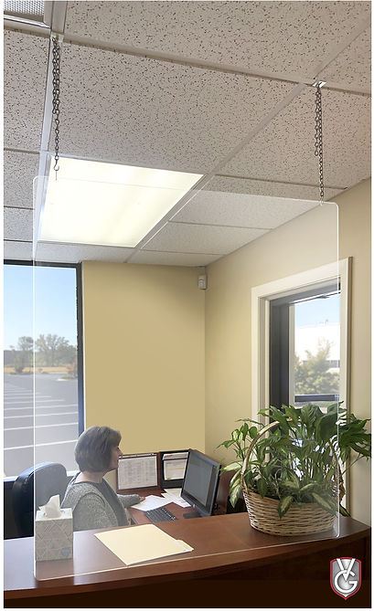 Virus Guard Hanging Photo.jpg