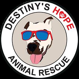 Destiny hope tote bag.png
