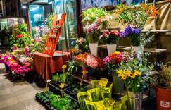 Flowers inside Estrella's Flower Shop in Dallas, TX