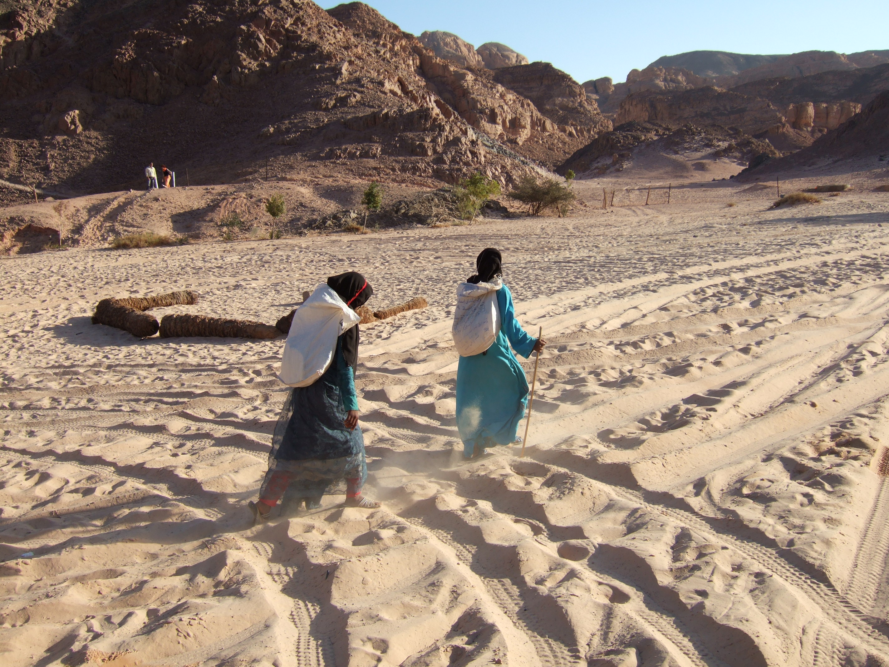 Sinai desert, Egypt 2008.