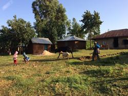 Village outside Migori, Kenya 2016.