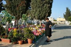 Cyprus 2006.