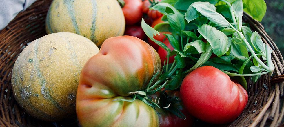 Frisches Gemüse aus eigenem Anbau
