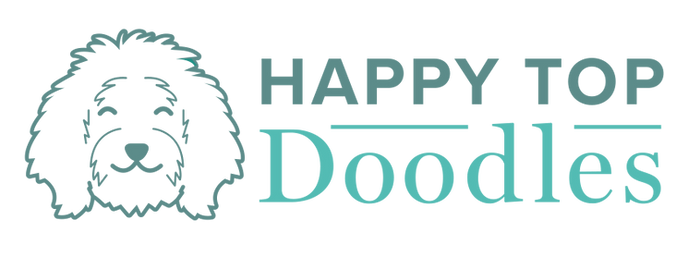 HappyTopDoodles_logo_RGB.png