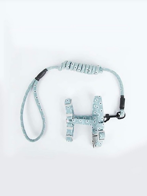 Daisy Harness and Leash