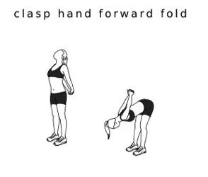 CLASP HANDS FORWARD FOLD