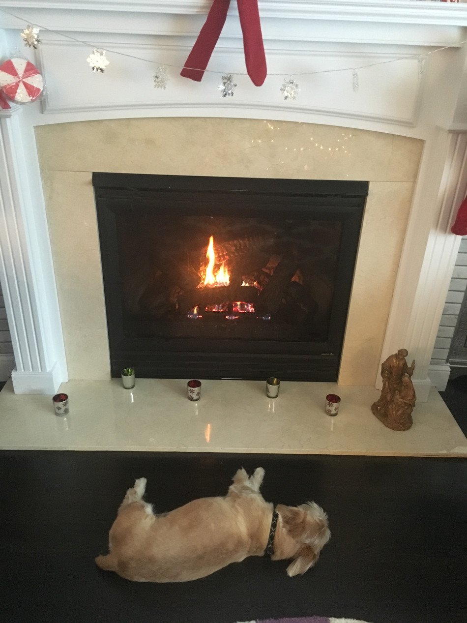 fireplace with munson