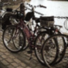 P1040367_edited_edited.jpg