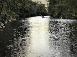 River Long Pool Past Shoal 1