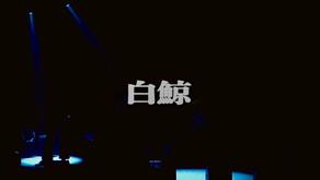 「白 鯨」MUSIC VIDEO 公開のお知らせ!!