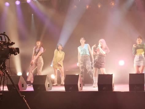 EGG SHELL母校、名古屋ビジュアルアーツ制作、白鯨MV !!