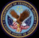 kisspng-veterans-health-administration-u