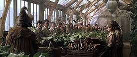 Rhodes Academy Classes at the American Wizarding School