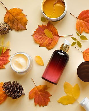 AS fall seasonal products for digital pa
