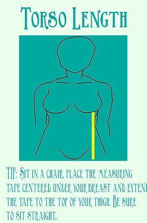 torso measurement picture.jpg