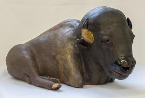 Chalem_Saskatchewan_bison