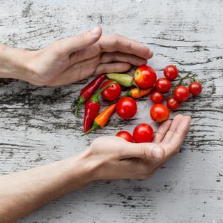 tomatoes, pureed