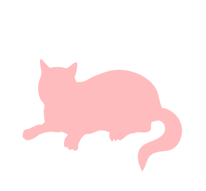 Coral%20Cat_edited.png