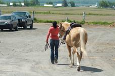 Une cavalière et son cheval