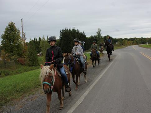 Une promenade à dos de cheval pour le cours d'équitation western