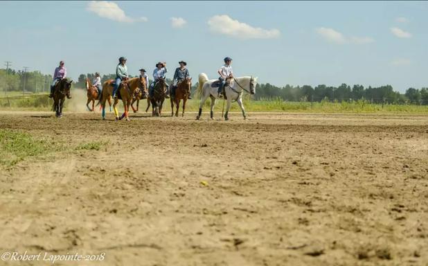 Échauffement des chevaux (AREWL)