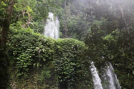 Djungeln i norra Lombok