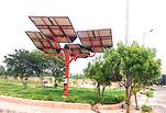 Solar Tree EV Charging