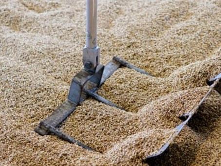 Spent Grains — Waste Well Spent!