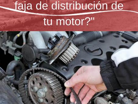 ¿Sabes qué hace la faja de distribución de tu motor?