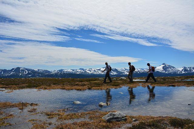 Hiking with Nuk Tessli Wilderness Experi