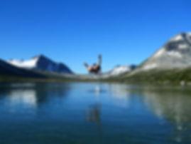 קופצים למים בנוק טסלי