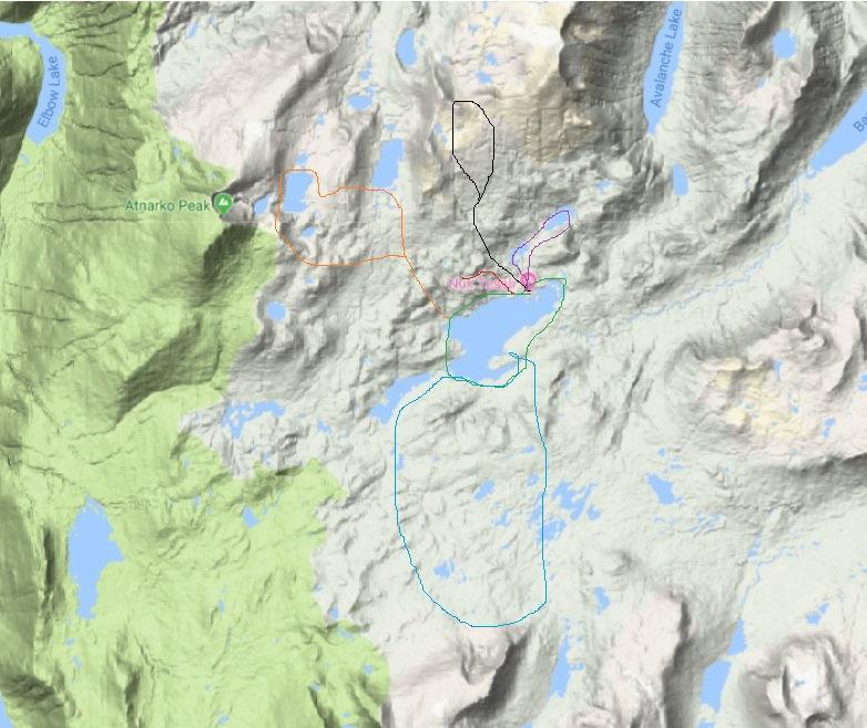 דוגמא למפת שבילים.jpg