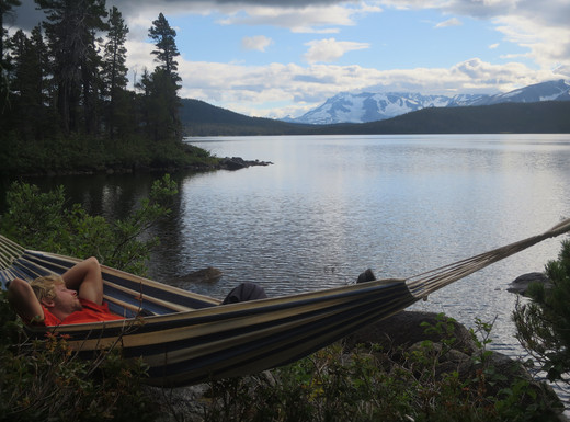 The hammock life