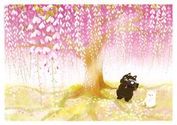 BW-051  紫藤樹