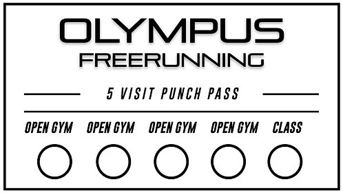 5 Open Gym Punch Pass