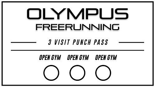 3 Open Gym Punch Pass