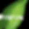 Perium Pest and Services Logo
