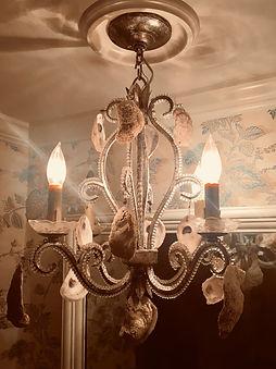 oyster shell chandelier.jpg
