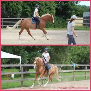Does your horse loose the canter or rush and become unbalanced?