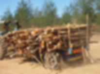 houtskool productie1.JPG